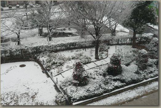 大阪雪景色3.jpg